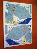 BA-MiG-19Hoppe.0006